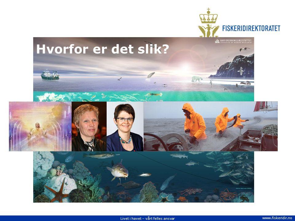 Livet i havet – vårt felles ansvar www.fiskeridir.no Hvorfor er det slik?