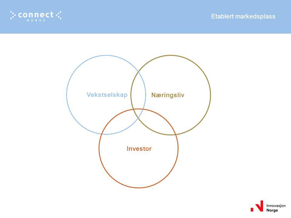 Etablert markedsplass Vekstselskap Investor Næringsliv
