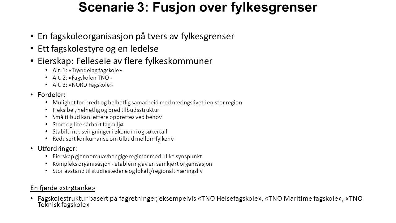 Scenarie 3: Fusjon over fylkesgrenser En fagskoleorganisasjon på tvers av fylkesgrenser Ett fagskolestyre og en ledelse Eierskap: Felleseie av flere fylkeskommuner Alt.