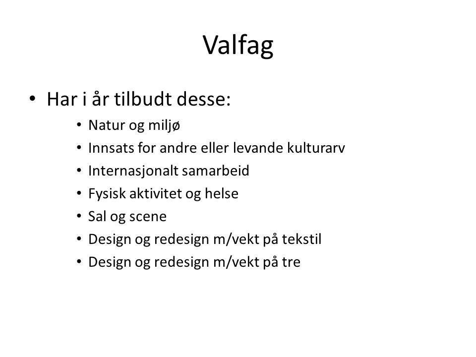 Valfag Har i år tilbudt desse: Natur og miljø Innsats for andre eller levande kulturarv Internasjonalt samarbeid Fysisk aktivitet og helse Sal og scen