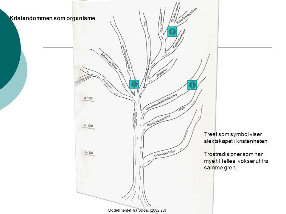 Kristendommen som organisme Modell hentet fra Sødal (2002:20 ) Treet som symbol viser slektskapet i kristenheten.