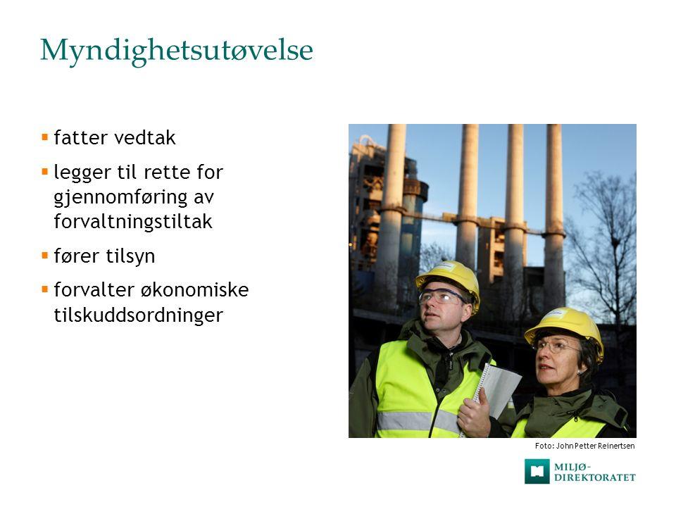 Styring og veiledning  styrer og veileder Fylkesmannen  veileder andre regionale og kommunale organer med delegerte miljøoppgaver  gir faglige innspill til Sysselmannen på Svalbard