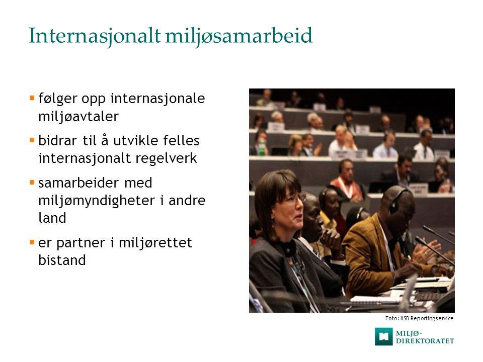 Internasjonalt miljøsamarbeid  følger opp internasjonale miljøavtaler  bidrar til å utvikle felles internasjonalt regelverk  samarbeider med miljøm