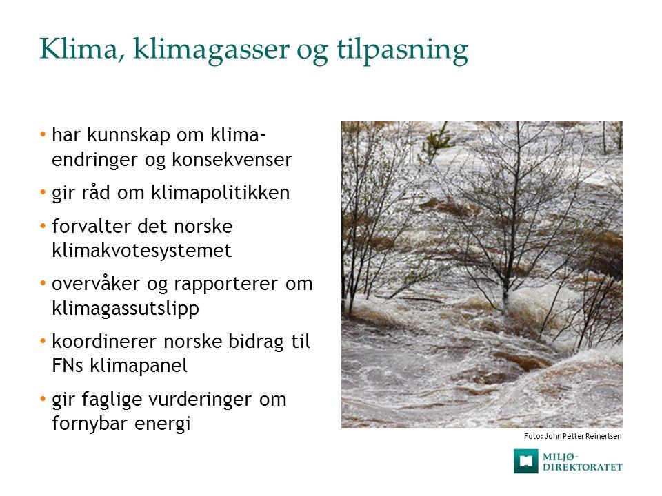 Klima, klimagasser og tilpasning har kunnskap om klima- endringer og konsekvenser gir råd om klimapolitikken forvalter det norske klimakvotesystemet o