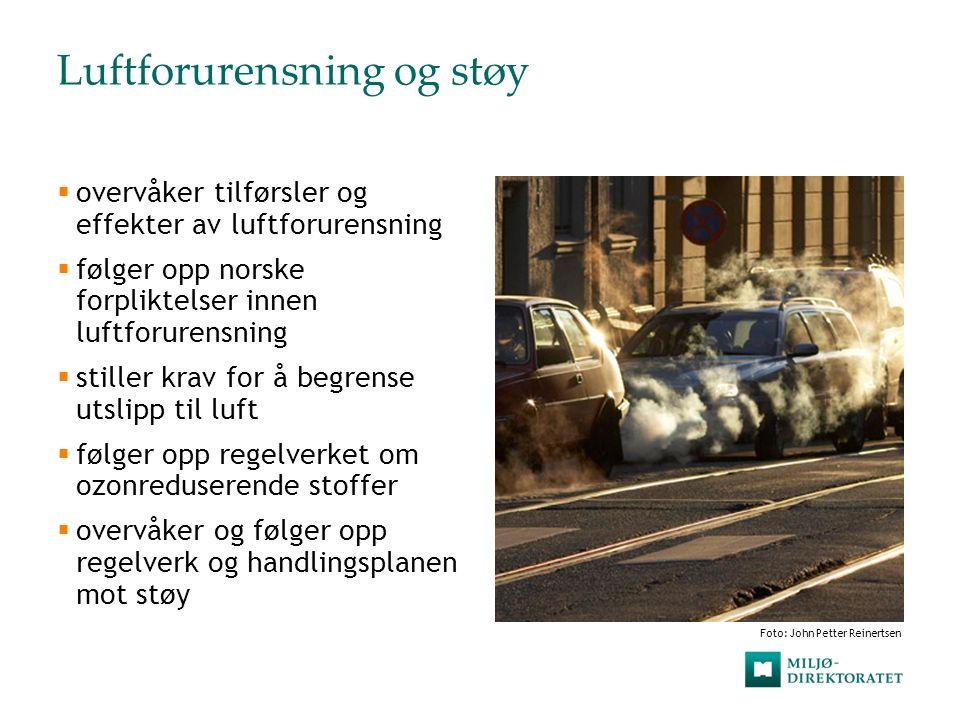 Luftforurensning og støy  overvåker tilførsler og effekter av luftforurensning  følger opp norske forpliktelser innen luftforurensning  stiller kra