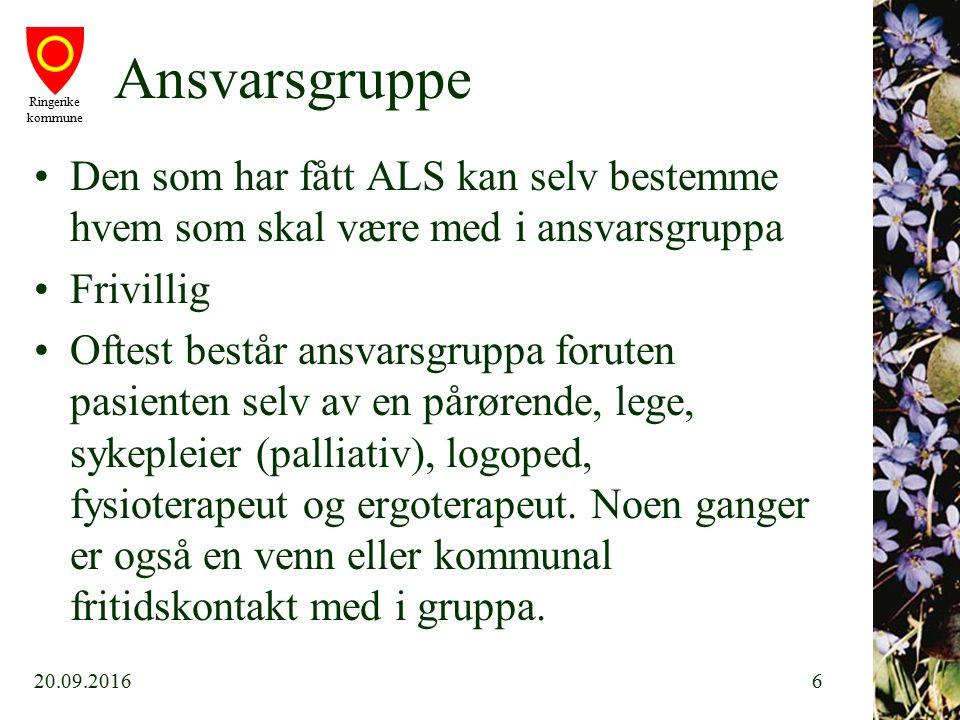 Ringerike kommune Ansvarsgruppe forts.