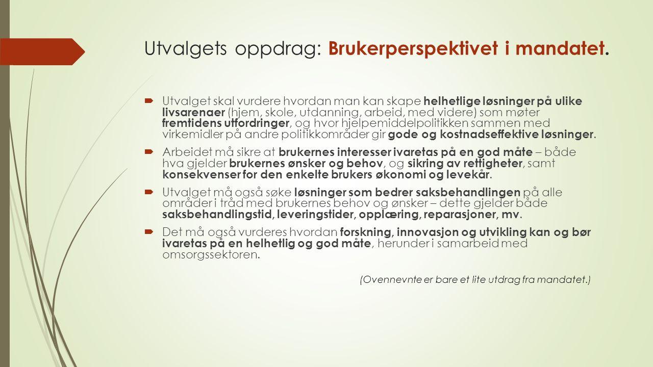 Utvalgets oppdrag: Brukerperspektivet i mandatet.
