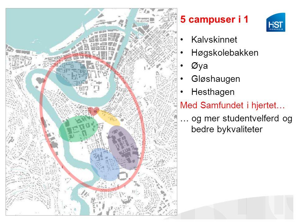 5 campuser i 1 Kalvskinnet Høgskolebakken Øya Gløshaugen Hesthagen Med Samfundet i hjertet… … og mer studentvelferd og bedre bykvaliteter