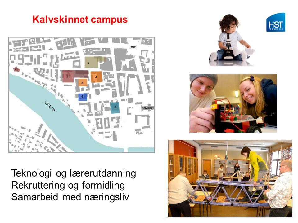Kalvskinnet campus Teknologi og lærerutdanning Rekruttering og formidling Samarbeid med næringsliv
