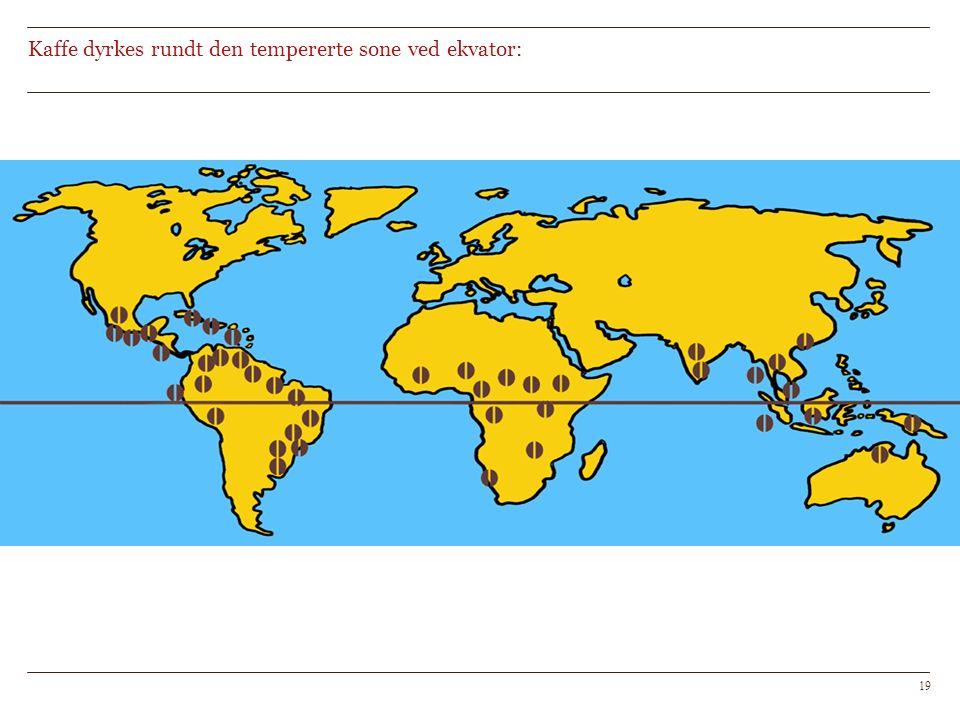 Kaffe dyrkes rundt den tempererte sone ved ekvator: 19
