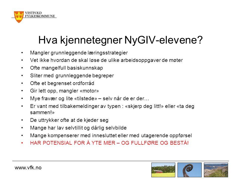 www.vfk.no Hva kjennetegner NyGIV-elevene.