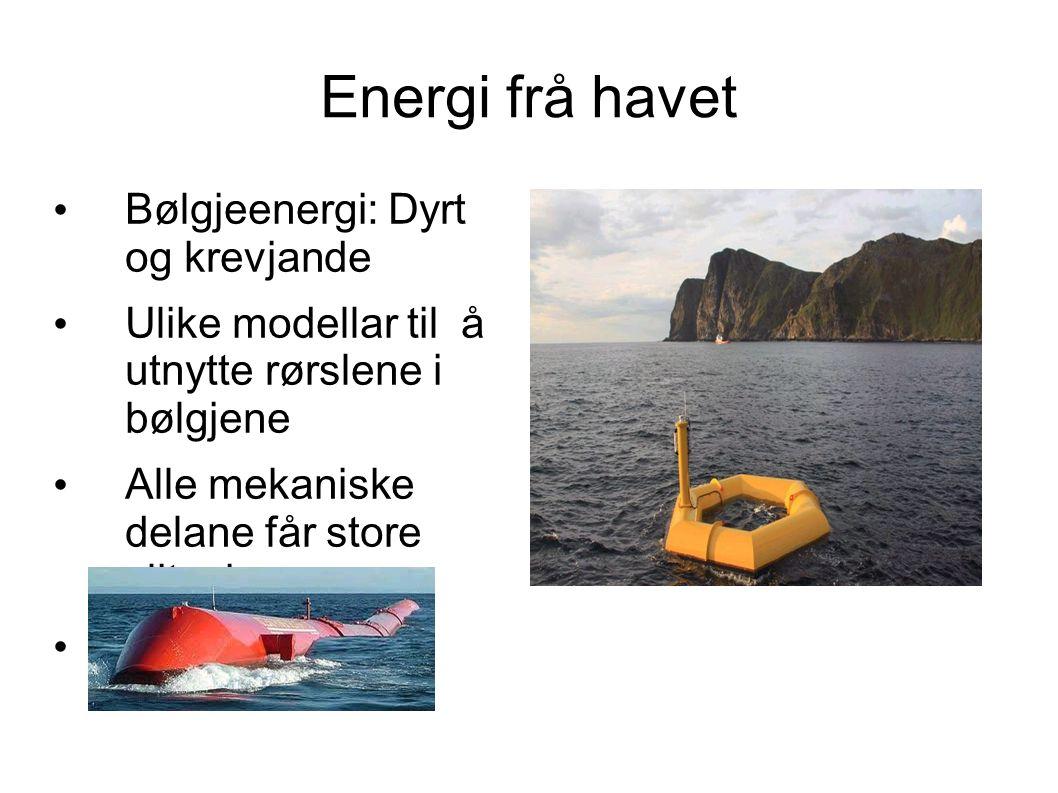 Energi frå havet Bølgjeenergi: Dyrt og krevjande Ulike modellar til å utnytte rørslene i bølgjene Alle mekaniske delane får store slitasjer.