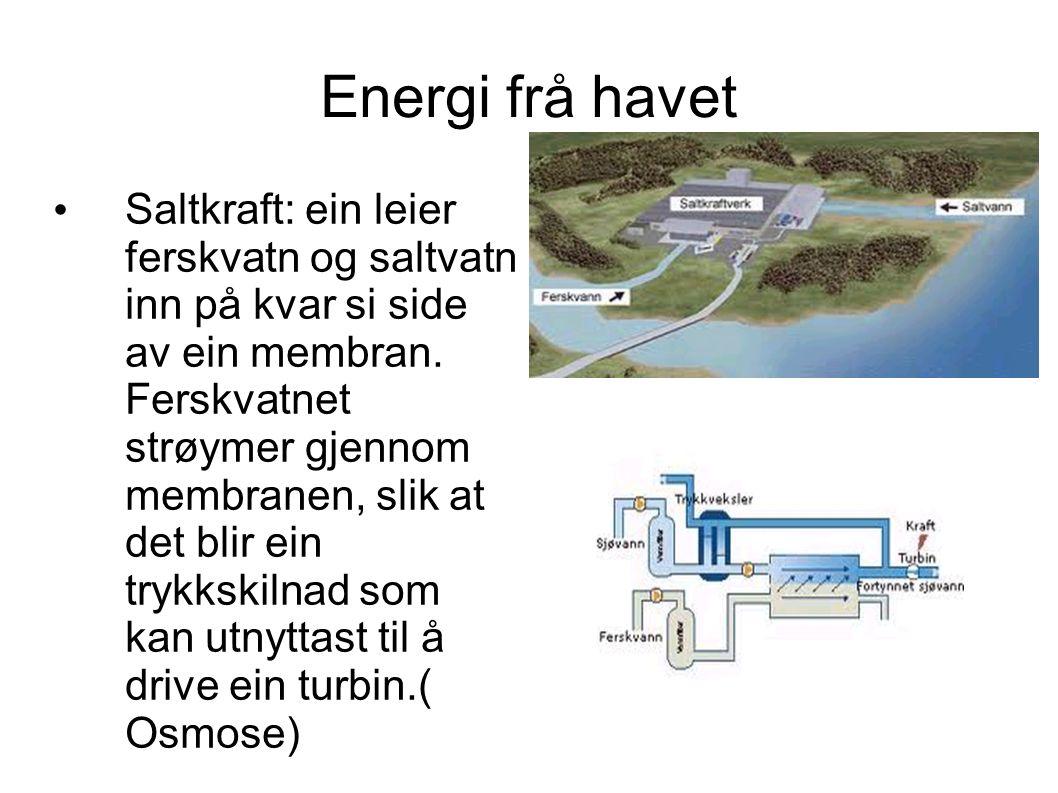 Energi frå havet Saltkraft: ein leier ferskvatn og saltvatn inn på kvar si side av ein membran. Ferskvatnet strøymer gjennom membranen, slik at det bl