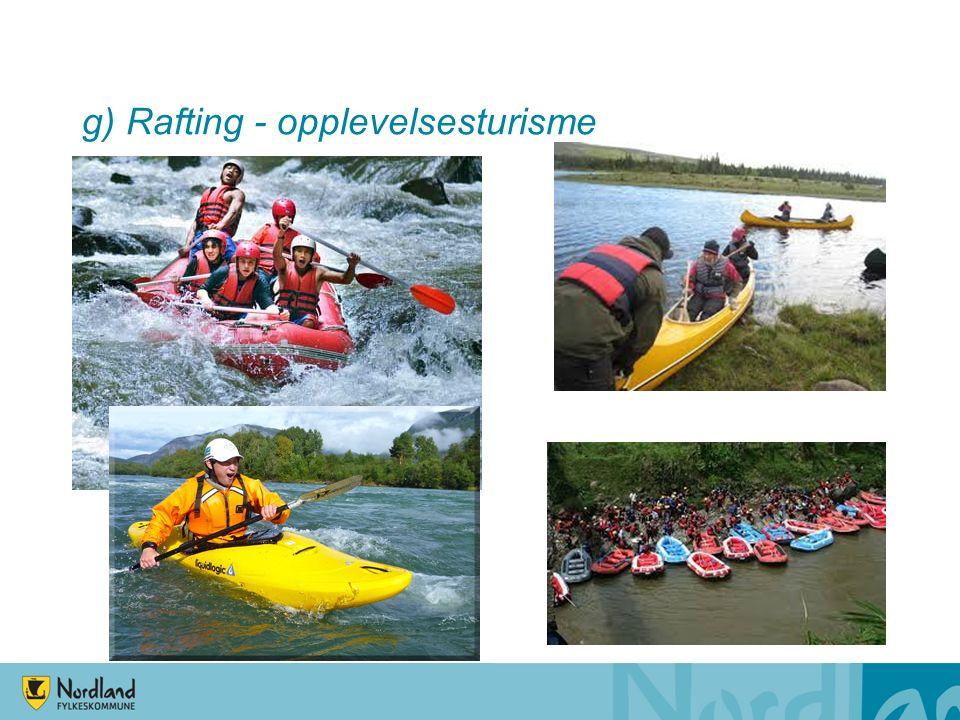 g) Rafting - opplevelsesturisme