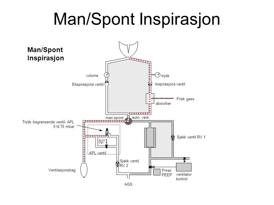Man/Spont Inspirasjon volume Inspirasjons ventil absorber man.spont.