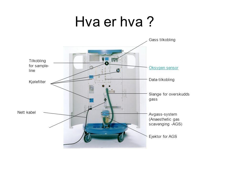 Gass tilkobling Tilkobling for sample- line Kjølefilter Nett kabel Oksygen sensor Data-tilkobling Slange for overskudds gass Avgass-system (Anaesthetic gas scavenging -AGS) Ejektor for AGS Hva er hva