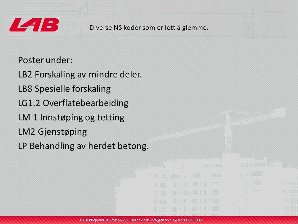 Diverse NS koder som er lett å glemme. Poster under: LB2 Forskaling av mindre deler. LB8 Spesielle forskaling LG1.2 Overflatebearbeiding LM 1 Innstøpi