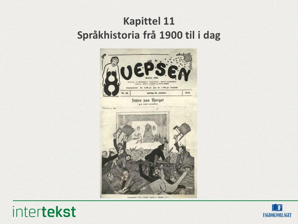 Kapittel 11 Språkhistoria frå 1900 til i dag