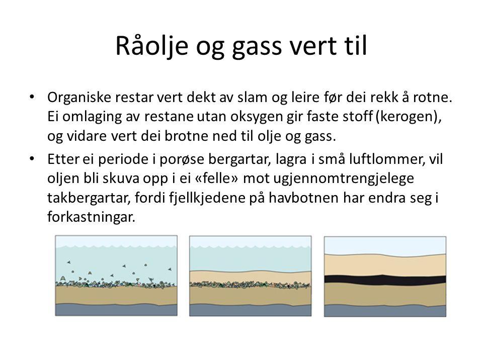 Oljen vert henta opp Lær om gasskraft Oljeleiting – Spesialbygde fartøy som kartlegg havbotnen – Fartøya sender ut lydbølgjer som vert reflektert når dei treffer overgangar frå ei bergart til ei anna.