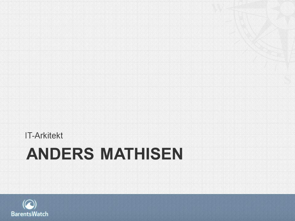 ANDERS MATHISEN IT-Arkitekt