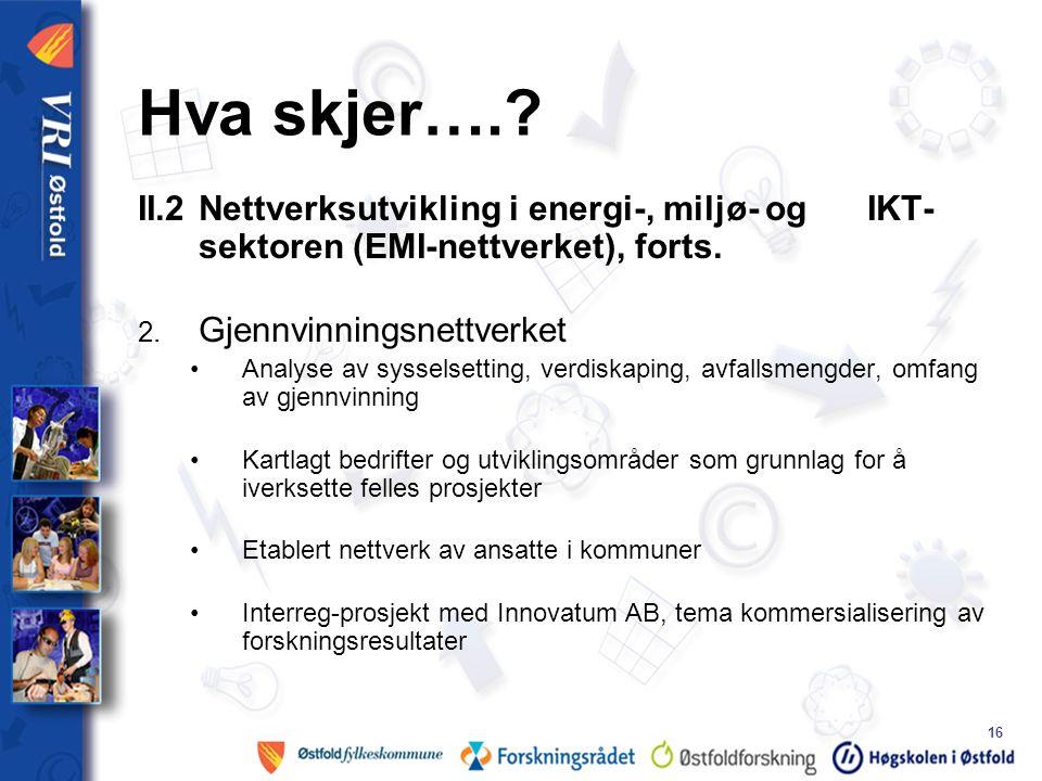 16 II.2 Nettverksutvikling i energi-, miljø- og IKT- sektoren (EMI-nettverket), forts.