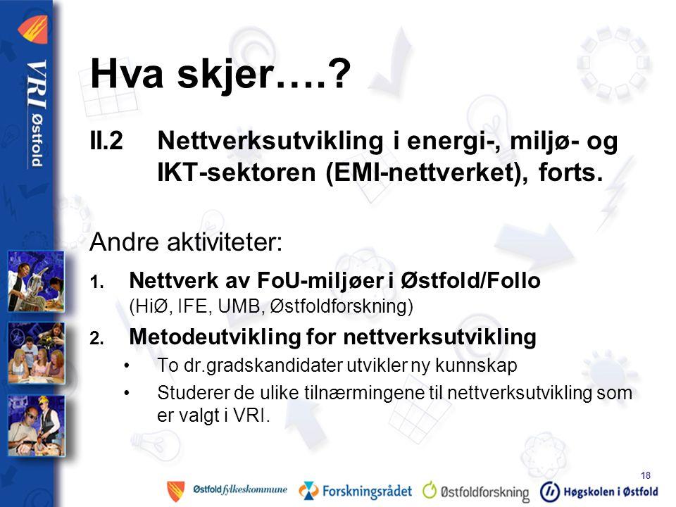 18 Hva skjer….. II.2 Nettverksutvikling i energi-, miljø- og IKT-sektoren (EMI-nettverket), forts.