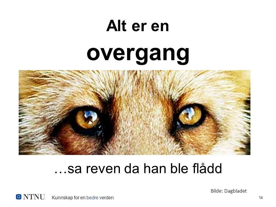 Kunnskap for en bedre verden 14 Alt er en overgang …sa reven da han ble flådd Bilde: Dagbladet