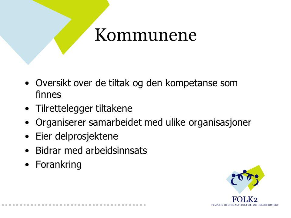 Kommunene Oversikt over de tiltak og den kompetanse som finnes Tilrettelegger tiltakene Organiserer samarbeidet med ulike organisasjoner Eier delprosj