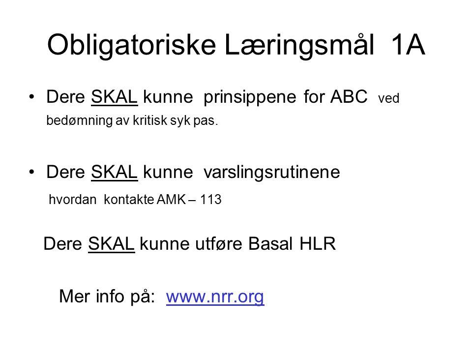 Obligatoriske Læringsmål 1A Dere SKAL kunne prinsippene for ABC ved bedømning av kritisk syk pas.