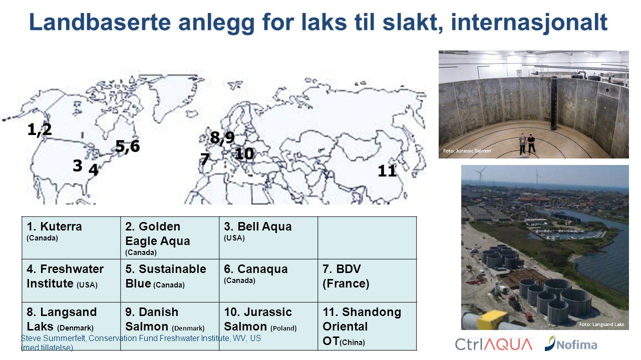 Landbaserte anlegg for laks til slakt, internasjonalt 1.