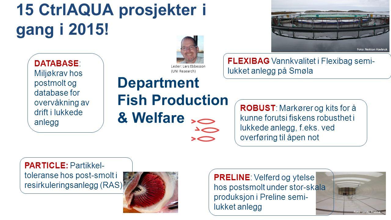 Department Fish Production & Welfare DATABASE: Miljøkrav hos postmolt og database for overvåkning av drift i lukkede anlegg ROBUST: Markører og kits for å kunne forutsi fiskens robusthet i lukkede anlegg, f.eks.