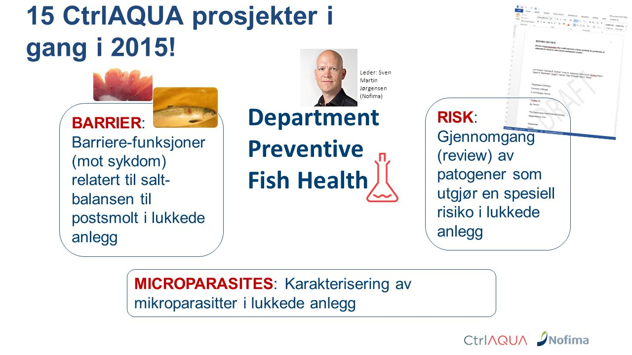 Department Preventive Fish Health BARRIER: Barriere-funksjoner (mot sykdom) relatert til salt- balansen til postsmolt i lukkede anlegg MICROPARASITES: Karakterisering av mikroparasitter i lukkede anlegg RISK: Gjennomgang (review) av patogener som utgjør en spesiell risiko i lukkede anlegg 15 CtrlAQUA prosjekter i gang i 2015.