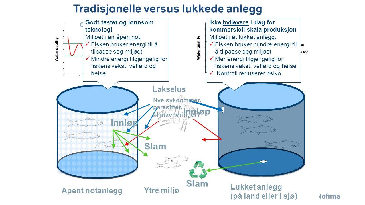 Forskningsresultater: Lukkede anlegg kan gi eksepsjonelt høy overlevelse Ytrestøyl, Terjesen et al, 2015, submitted Lukket anlegg i sjø, til 1 kg Landbasert lukket anlegg til 1 kg, så åpen not til 2.5 kg Handeland et al., 2014