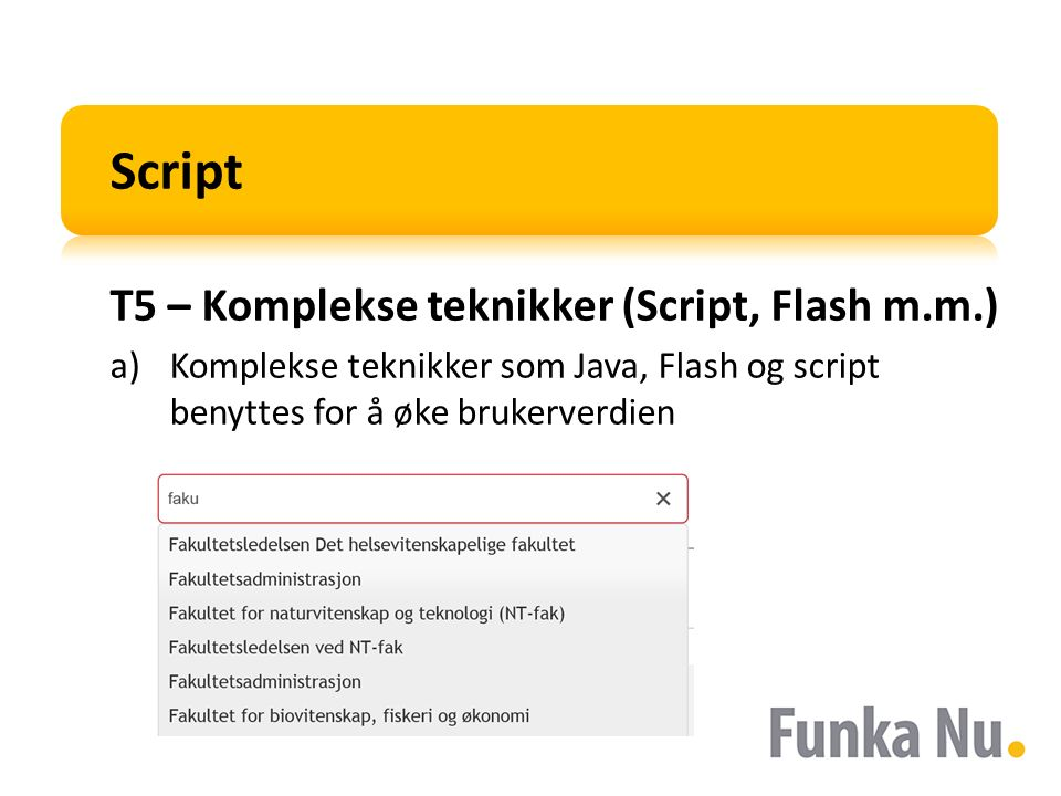 Script T5 – Komplekse teknikker (Script, Flash m.m.) a)Komplekse teknikker som Java, Flash og script benyttes for å øke brukerverdien