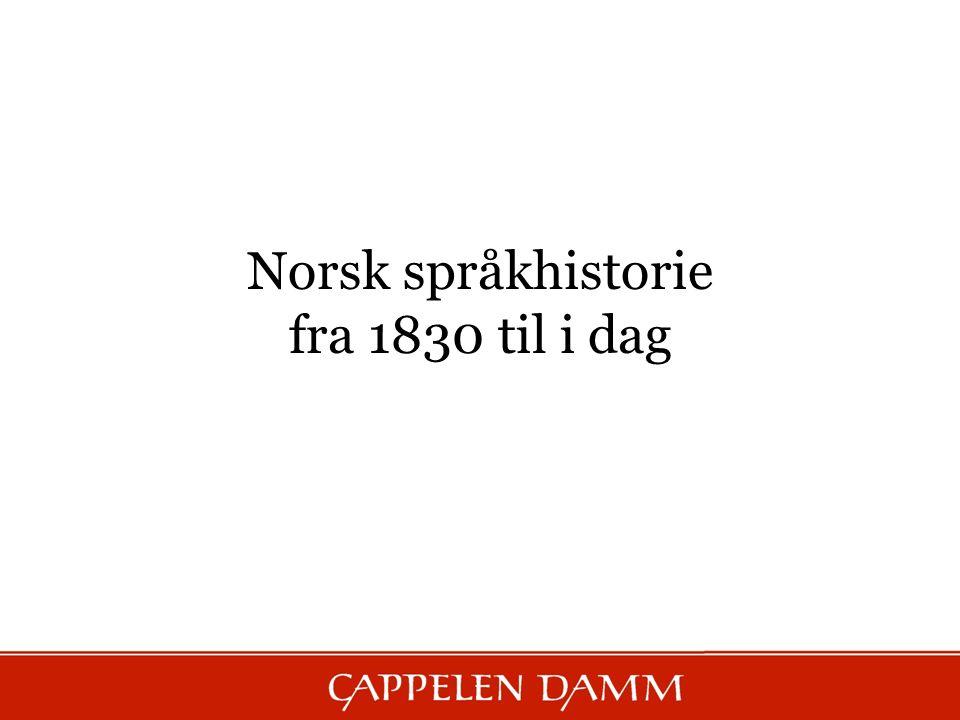 Norsk språkhistorie fra 1830 til i dag