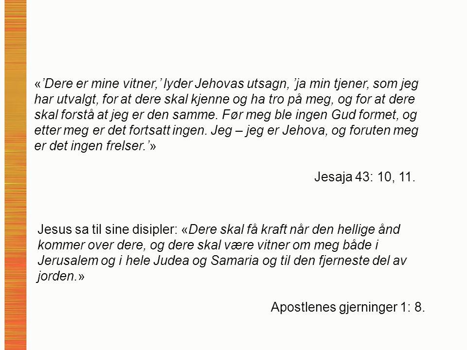 «'Dere er mine vitner,' lyder Jehovas utsagn, 'ja min tjener, som jeg har utvalgt, for at dere skal kjenne og ha tro på meg, og for at dere skal forstå at jeg er den samme.