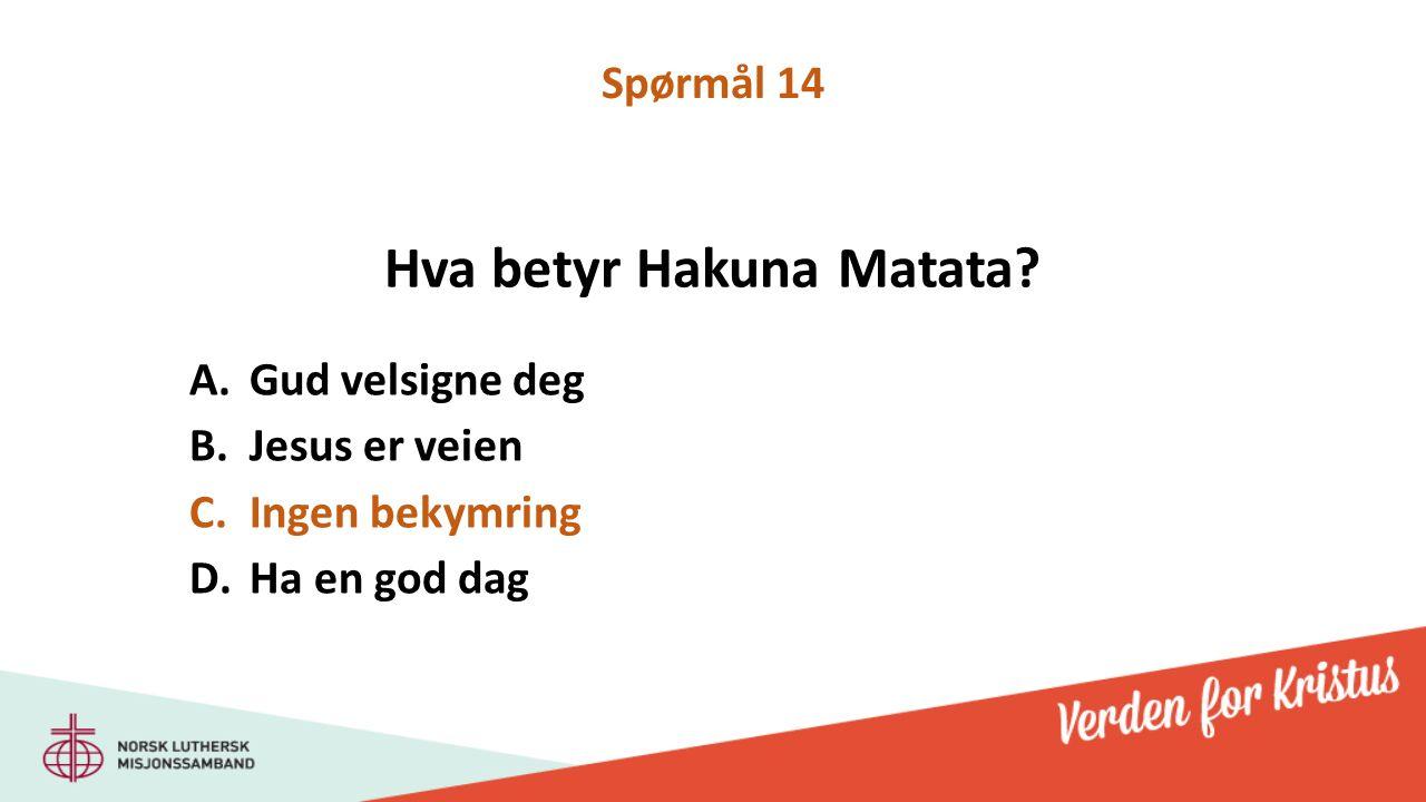 Hva betyr Hakuna Matata.
