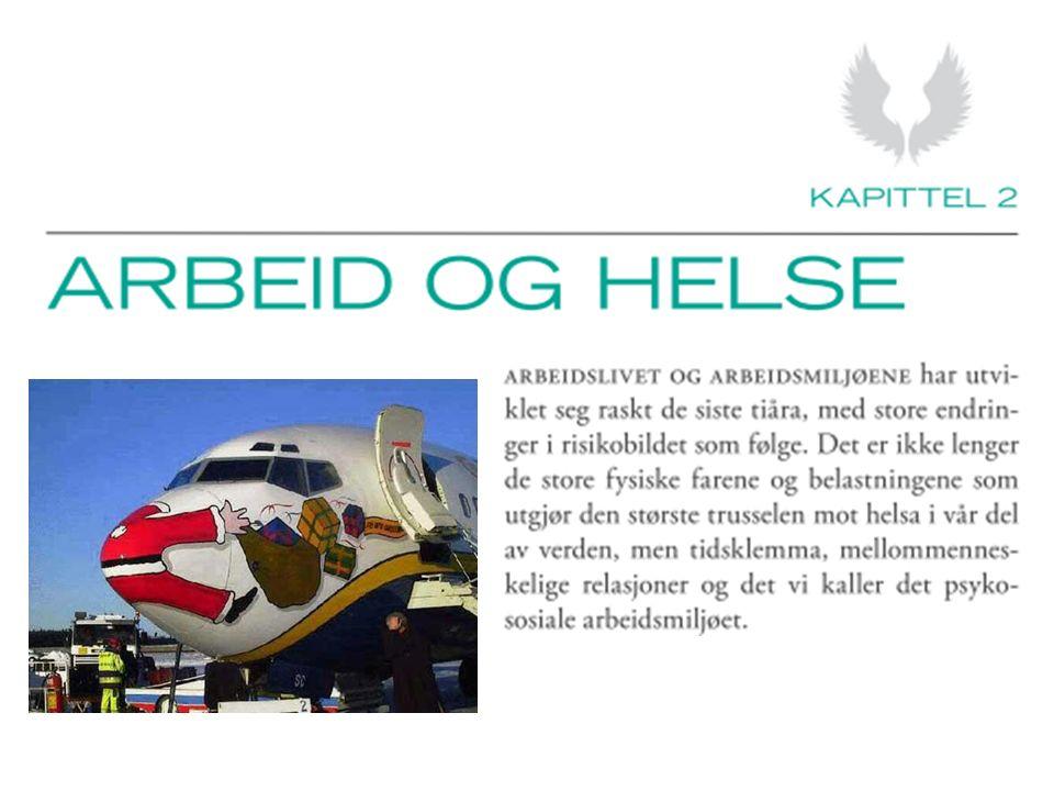 STAMI-rapport 21/2008 Forenklet oversikt (forts.)