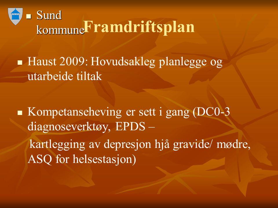 Sund kommune Sund kommune Framdriftsplan Haust 2009: Hovudsakleg planlegge og utarbeide tiltak Kompetanseheving er sett i gang (DC0-3 diagnoseverktøy,