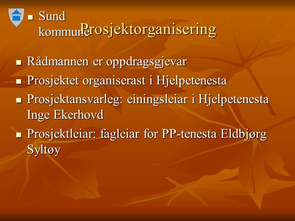 Sund kommune Sund kommune Prosjektorganisering Rådmannen er oppdragsgjevar Rådmannen er oppdragsgjevar Prosjektet organiserast i Hjelpetenesta Prosjek