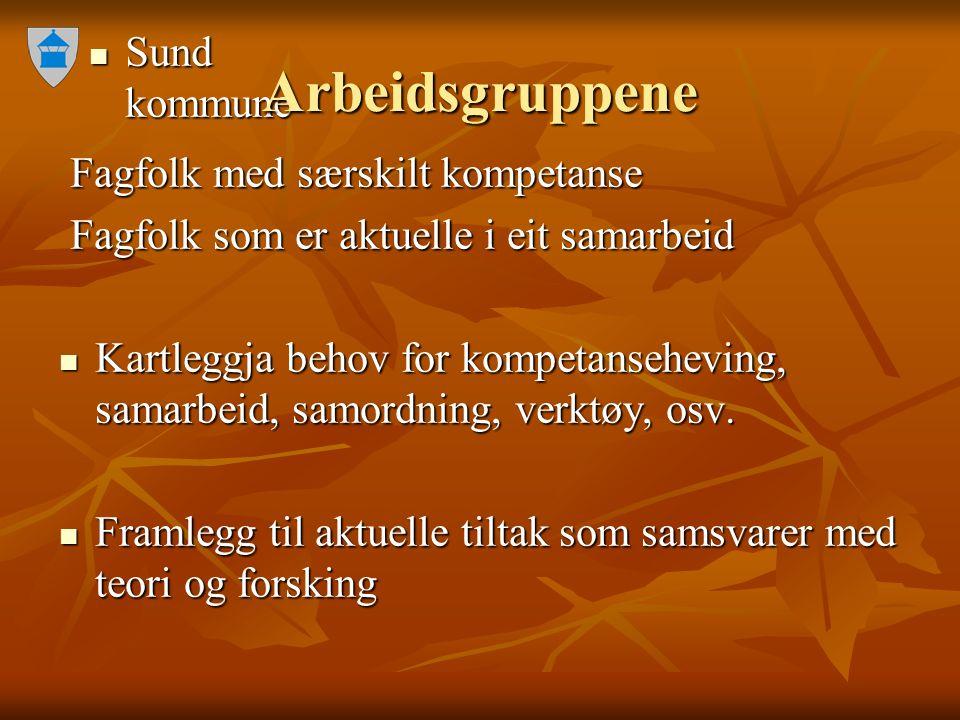 Sund kommune Sund kommune Arbeidsgruppene Fagfolk med særskilt kompetanse Fagfolk med særskilt kompetanse Fagfolk som er aktuelle i eit samarbeid Fagf