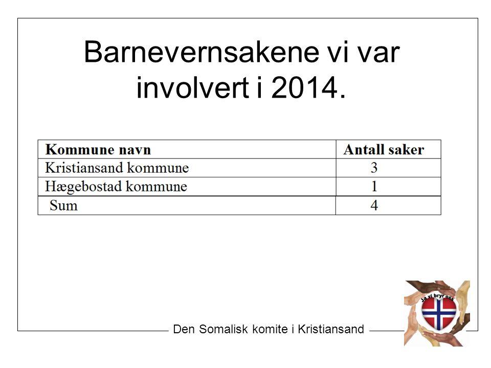 Barnevernsakene vi var involvert i 2014. Den Somalisk komite i Kristiansand