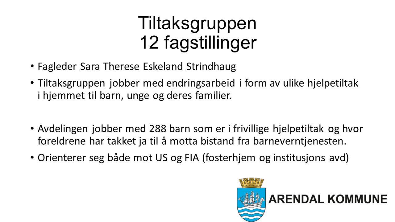 Tiltaksgruppen 12 fagstillinger Fagleder Sara Therese Eskeland Strindhaug Tiltaksgruppen jobber med endringsarbeid i form av ulike hjelpetiltak i hjemmet til barn, unge og deres familier.