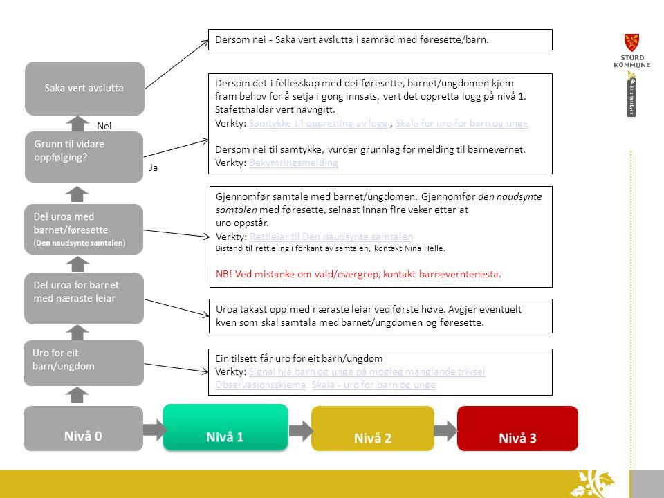 Evaluering: Tiltak på nivå 1 og behov for ytterlegare innsats Beslutning: 1.Avslutta saka 2.Fortsetja innsats på nivå 1 3.Skal andre involverast.