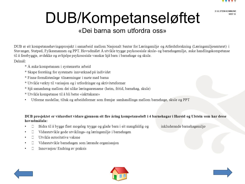 © ULSTEIN KOMMUNE SIDE 12 © ULSTEIN KOMMUNE DUB er eit kompetansehevingsprosjekt i samarbeid mellom Nasjonalt Senter for Læringsmiljø og Atferdsforskning (Læringsmiljøsenteret) i Stavanger, Statped, Fylkesmannen og PPT.