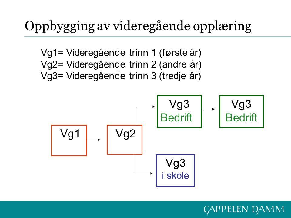 Oppbygging av videregående opplæring Vg1 Vg2 Vg3 Bedrift Vg3 Bedrift Vg3 i skole Vg1= Videregående trinn 1 (første år) Vg2= Videregående trinn 2 (andr