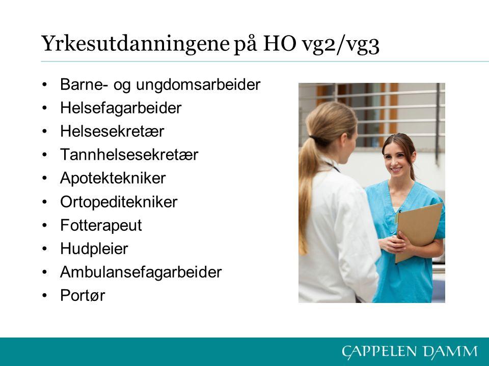 Yrkesutdanningene på HO vg2/vg3 Barne- og ungdomsarbeider Helsefagarbeider Helsesekretær Tannhelsesekretær Apotektekniker Ortopeditekniker Fotterapeut Hudpleier Ambulansefagarbeider Portør