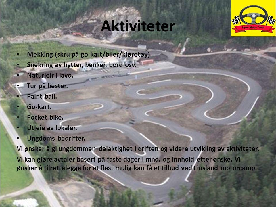 Aktiviteter Mekking (skru på go-kart/biler/kjøretøy) Snekring av hytter, benker, bord osv. Naturleir i lavo. Tur på hester. Paint-ball. Go-kart. Pocke
