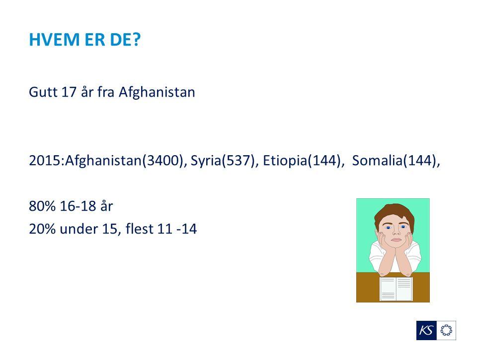 HVEM ER DE? Gutt 17 år fra Afghanistan 2015:Afghanistan(3400), Syria(537), Etiopia(144), Somalia(144), 80% 16-18 år 20% under 15, flest 11 -14
