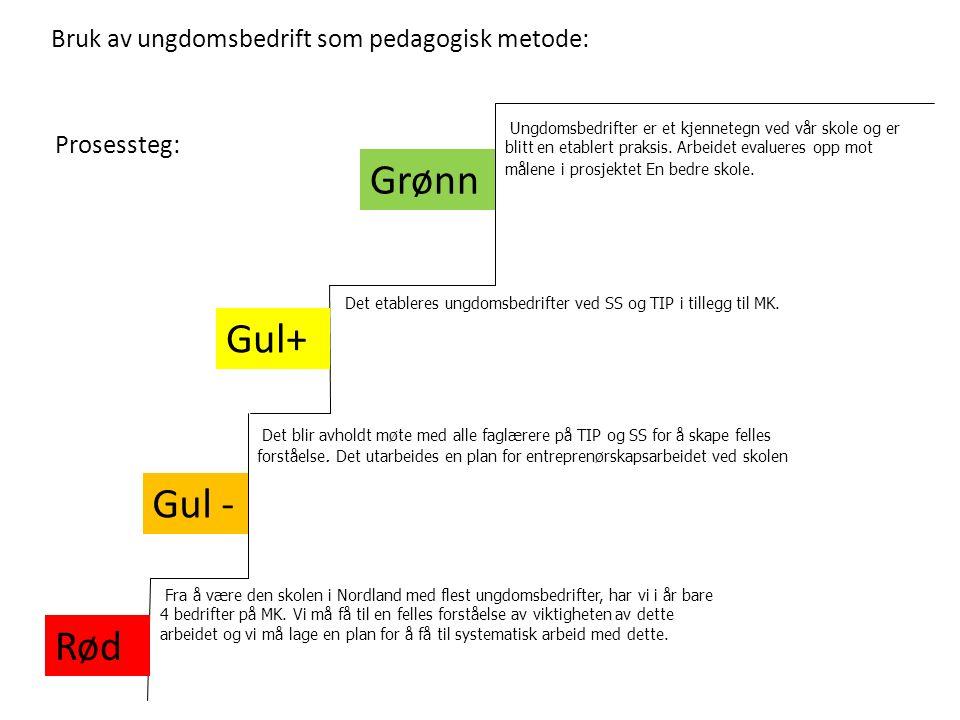Bruk av ungdomsbedrift som pedagogisk metode: Grønn Gul - Rød Det etableres ungdomsbedrifter ved SS og TIP i tillegg til MK.